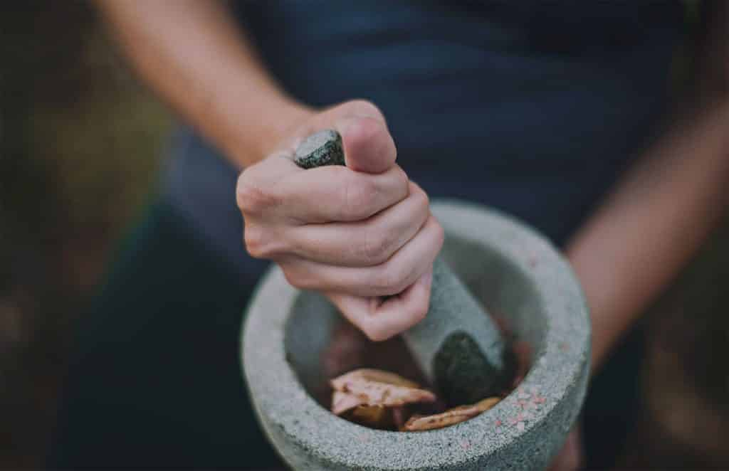 Using mortar and pestle to pulverize herbs and mushrooms